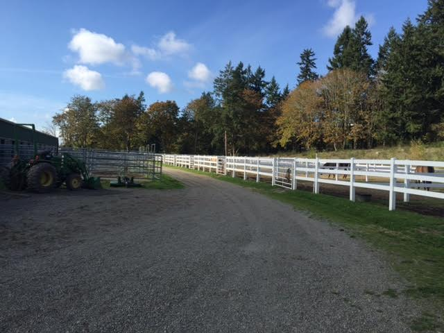 Heartsong Equestrian Facility-Gig Harbor-Horse Boarding-Riding Lessons-6