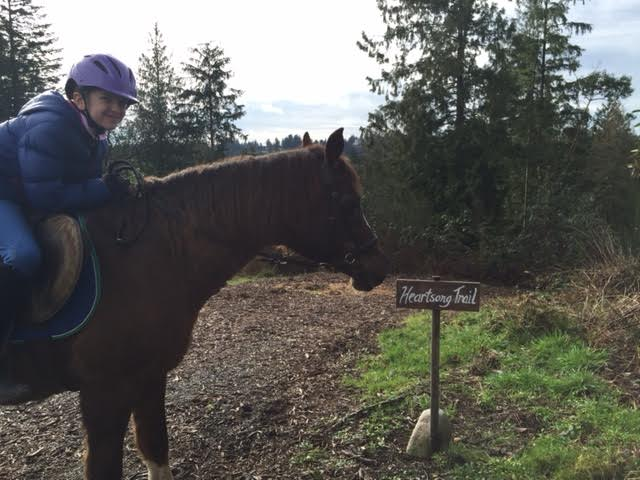 Heartsong Equestrian Facility-Gig Harbor-Horse Boarding-Riding Lessons-8