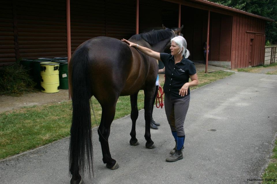 Harmonic Riding and Healing - 004