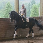 Harmonic Riding & Healing