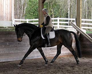 Mary Beth riding Screanplay